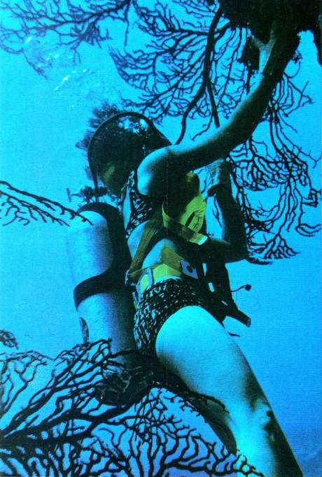 cozumel-sixties